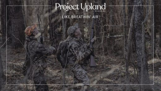 Squirrel Hunting FIlm by Project Upland Magazine – Like Breathin Air